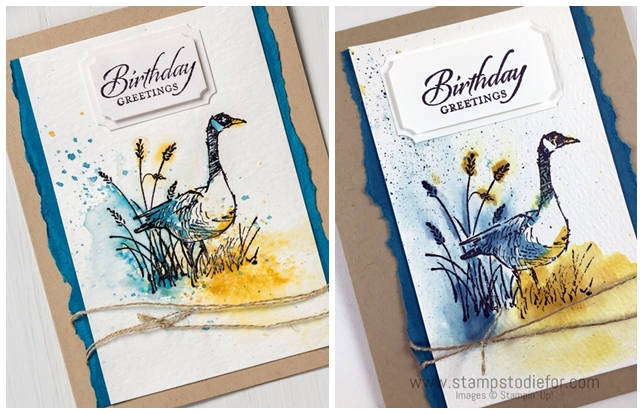 Just in CASE - Wetlands Stamp Set by Stampin' Up! Watercolor technique www.stampstodiefor.com horz