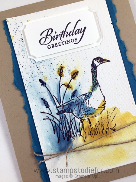 Just in CASE - Wetlands Stamp Set by Stampin' Up! Watercolor technique www.stampstodiefor.com