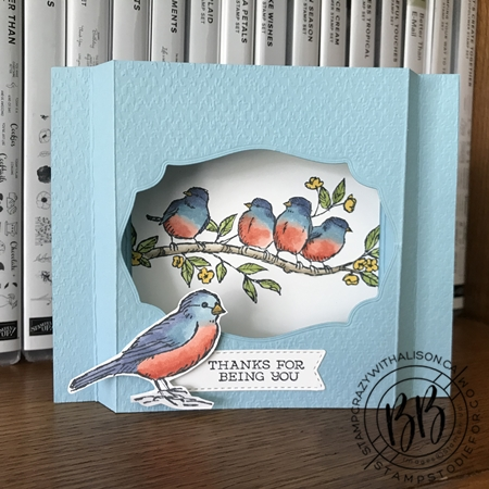 Shadow Box Card - Free As A Bird Stamp Set by Stampin' Up!