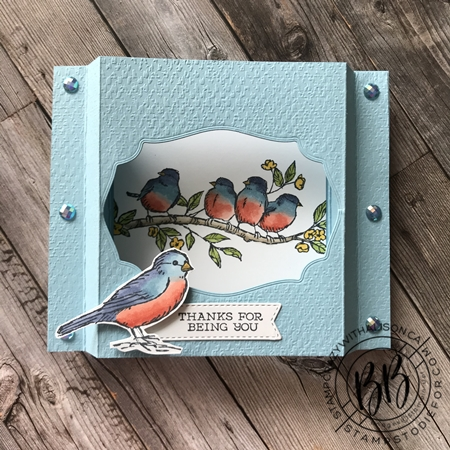 Shadow Box Card - Free As A Bird Stamp Set by Stampin' Up! 2