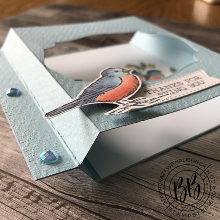 Shadow Box Card - Free As A Bird Stamp Set by Stampin' Up! 5