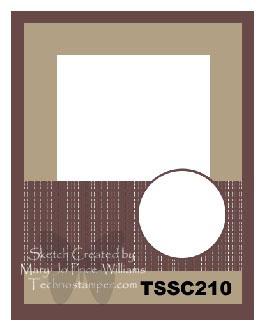 TSSC210
