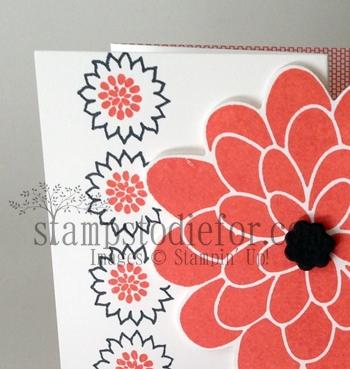 Flower patch teaser