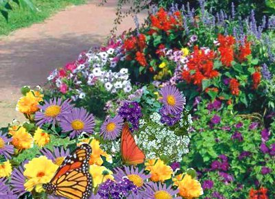 Flower bed all different colors