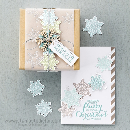 Snow Flurry Punch and Flurry Wishes Stamp Set by Stampin' Up! 2