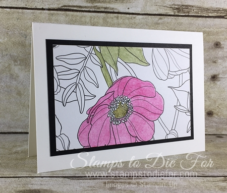 Stampin' Up! www.stampstodiefor.com