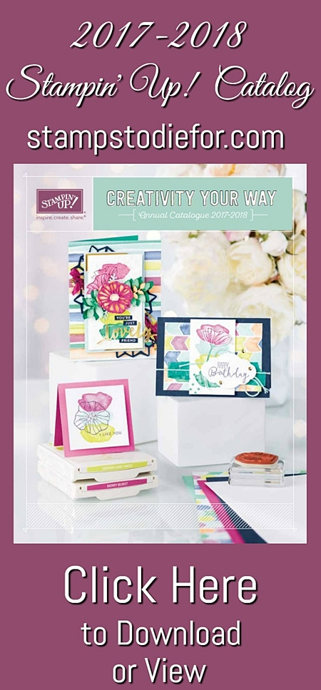 2017-2018 Stampin' Up! Catalog Download or View www.stampstodiefor.com 450