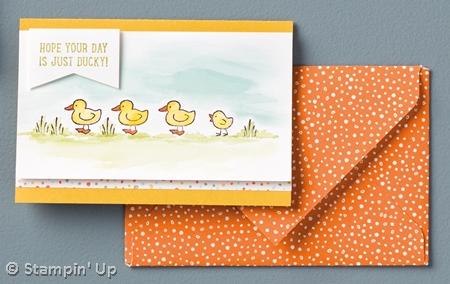 Barnyard Babies stamp set #stampinup 2