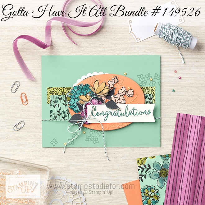 Gotta Have it All Bundle by Stampin Up 2