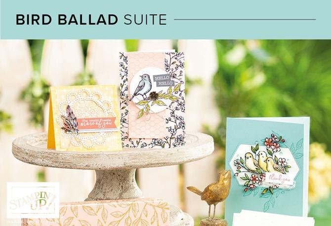 Bird Ballard Suite