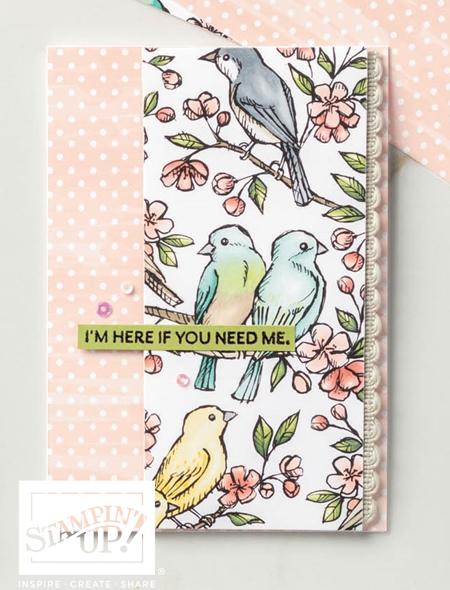 Free as a Bird Sample A