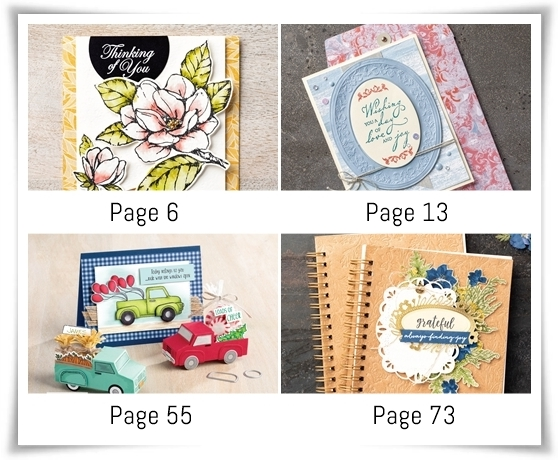 New catalog samples pages