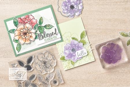 To a Wild Rose Stamp Set Bundle by Stampin' Up!