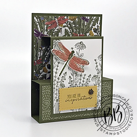 Fun fold card created with Dragon Fly Garden Stamp Set by Stampin Up
