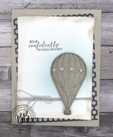 Just in Case Soar Confidentially Stamp Set  3 stampcrazywithalison.com
