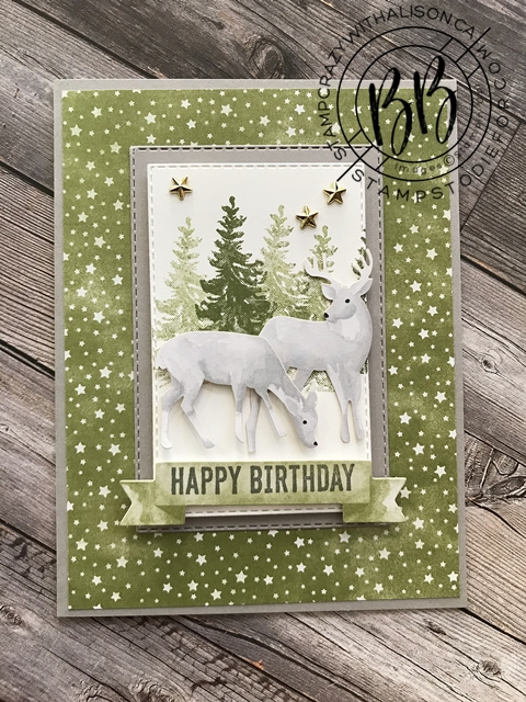 Most Wonderful Time Product Medley by Stampin' Up!® Deer Christmas Card 4