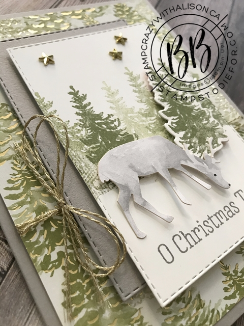 Most Wonderful Time Product Medley by Stampin' Up!® Deer Christmas Card 3