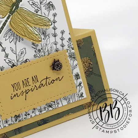 Fun fold card created with Dragon Fly Garden Stamp Set by Stampin Up bumble bee ladybug embellishment